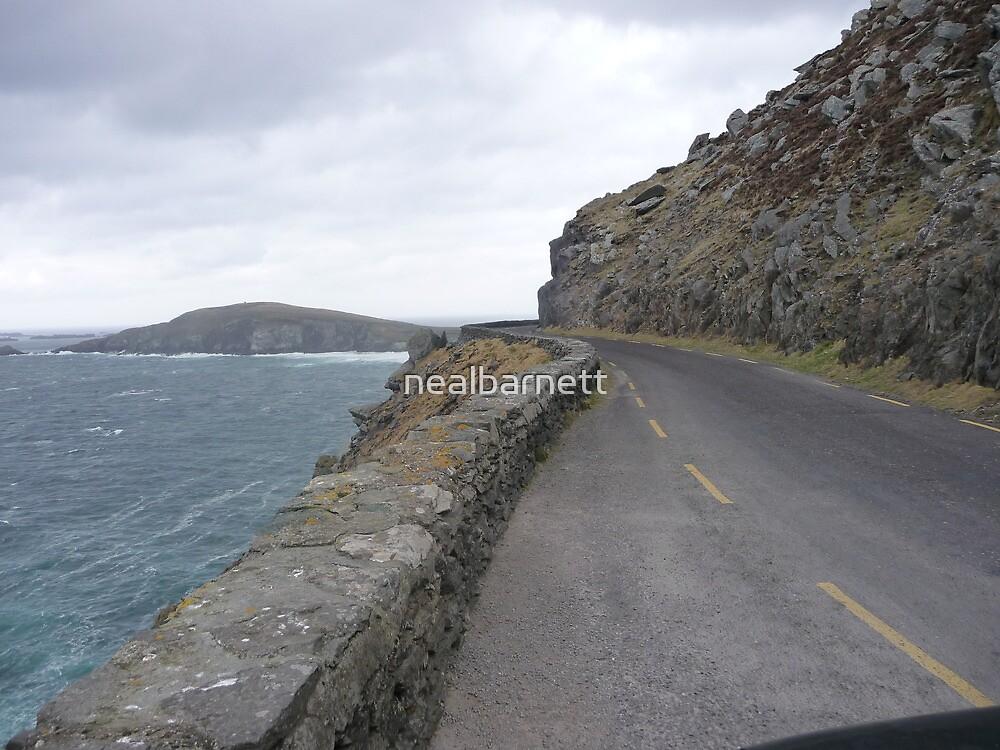 Slea Head Drive by nealbarnett