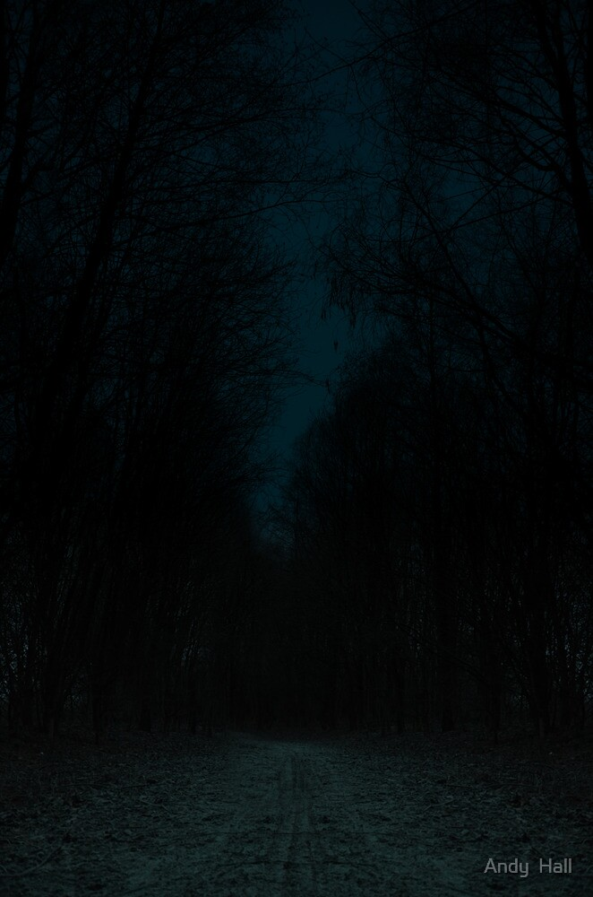 tis a dark road that we walk.  by Andy  Hall