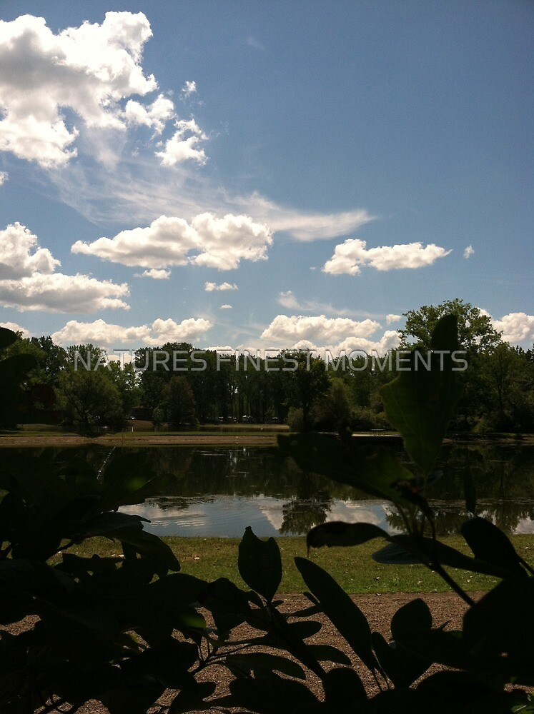 Pond with clouds by NATURES FINEST MOMENTS