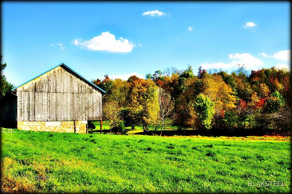 In The Field's Of Autumn's Splender by BLAKSTEEL