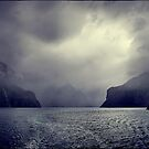 Milford Sound III by andreisky