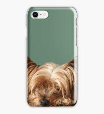 Sleeping Yorkie Dog iPhone Case/Skin