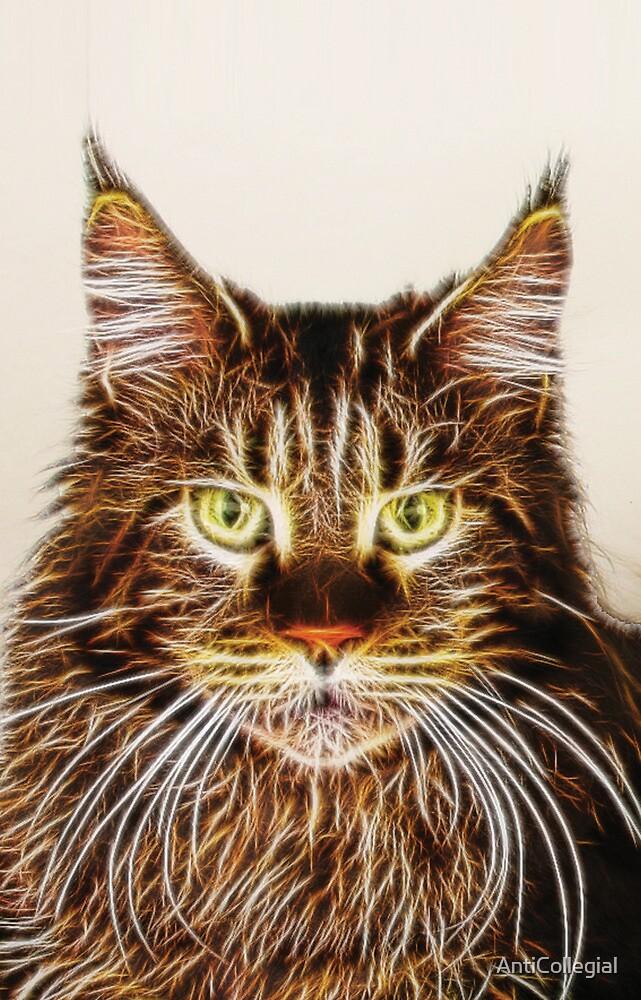 Fractalius Maine Coon Cat by AntiCollegial