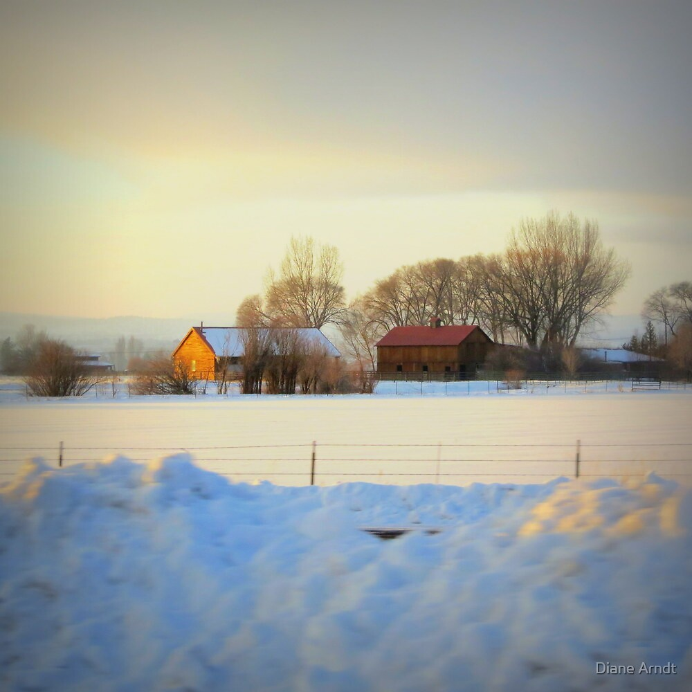 Home Home On The Plains...Oregon Plains heading to Bend, Ore. by Diane Arndt