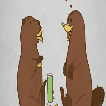 What makes a platypus like a beaver? by Ensee87