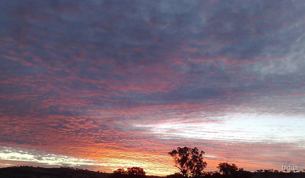 Sunset Dreaming by bidya