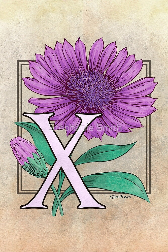 X is for Xeranthemum card by Stephanie Smith