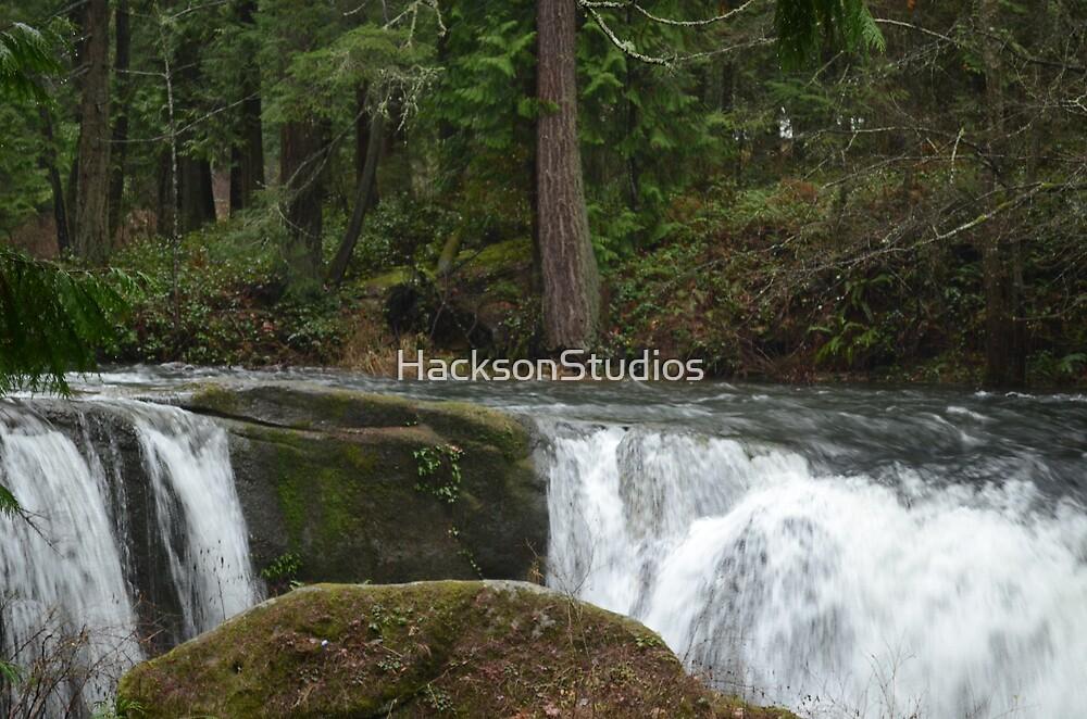 Swimming Upstream by HacksonStudios
