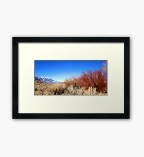 Winter Desert Colors Framed Print