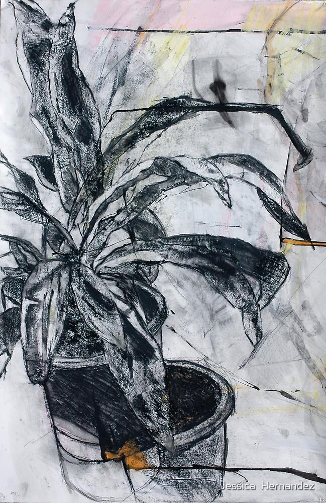 Plant Study II by Jessica  Hernandez
