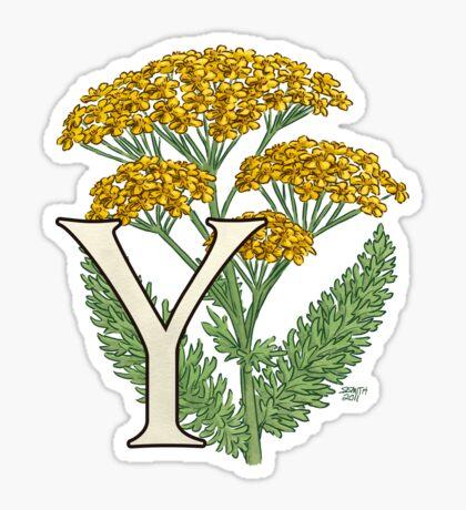Y is for Yarrow card Sticker