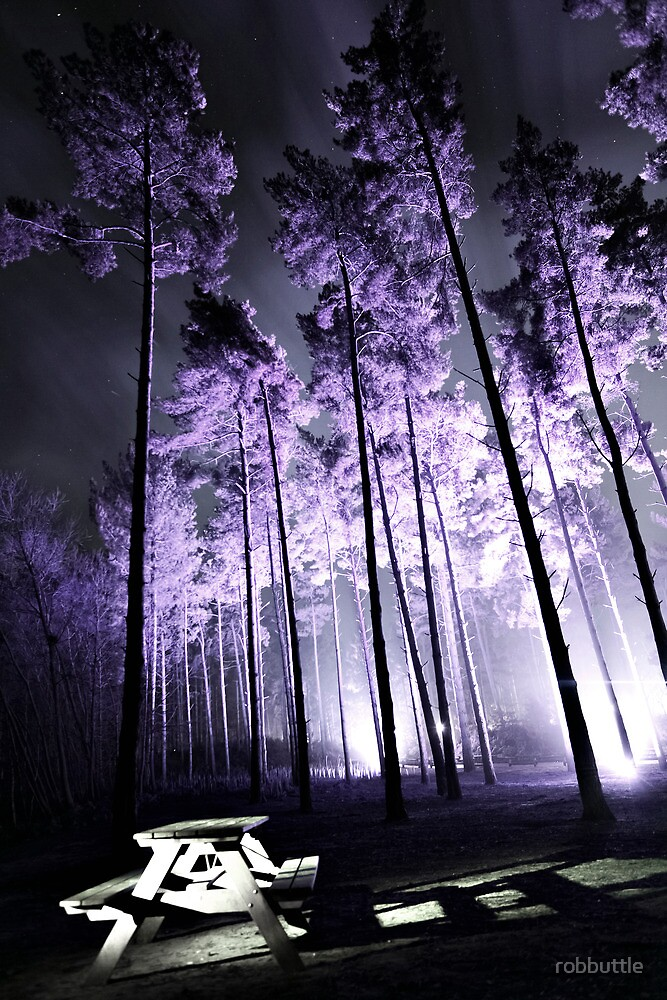 Lilac Forest by robbuttle