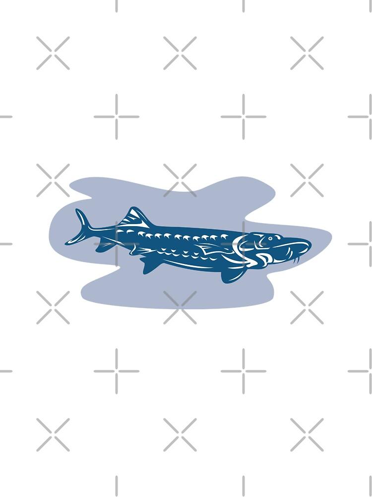 Sturgeon Fish Retro by patrimonio