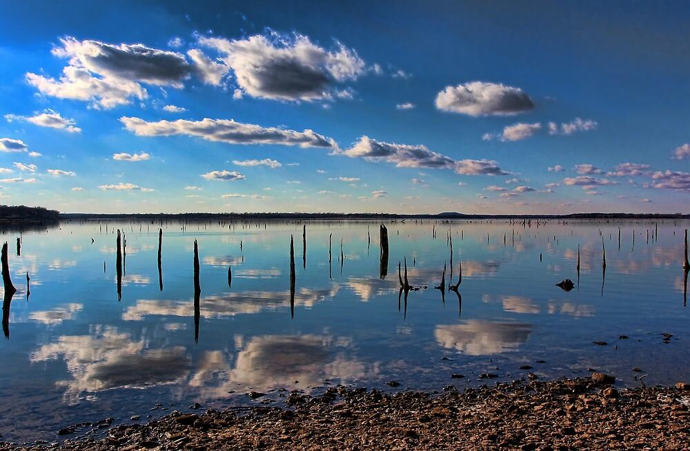 Quiet Times by Carolyn  Fletcher