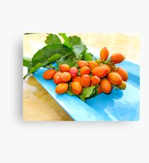 Complementary Colours Canvas Print