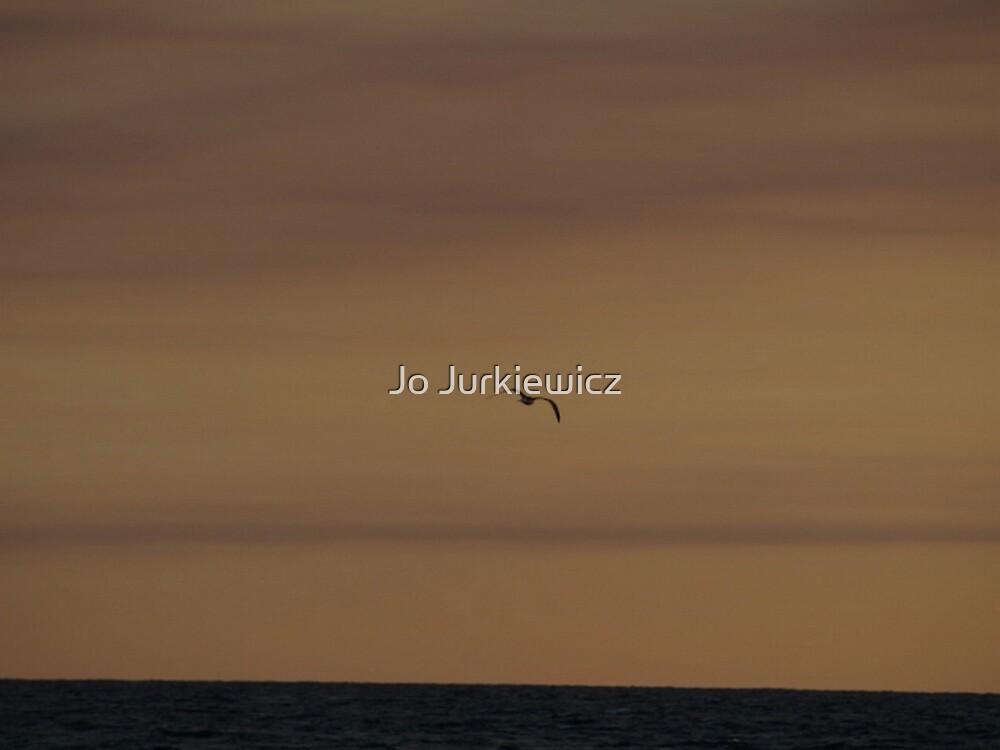 Bird Flying at Dusk by Jo Jurkiewicz