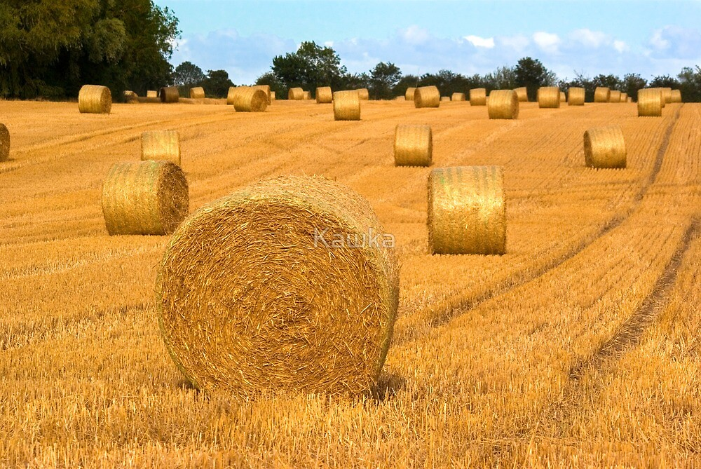 Straw Bales near Fressingfield Suffolk  by Kawka