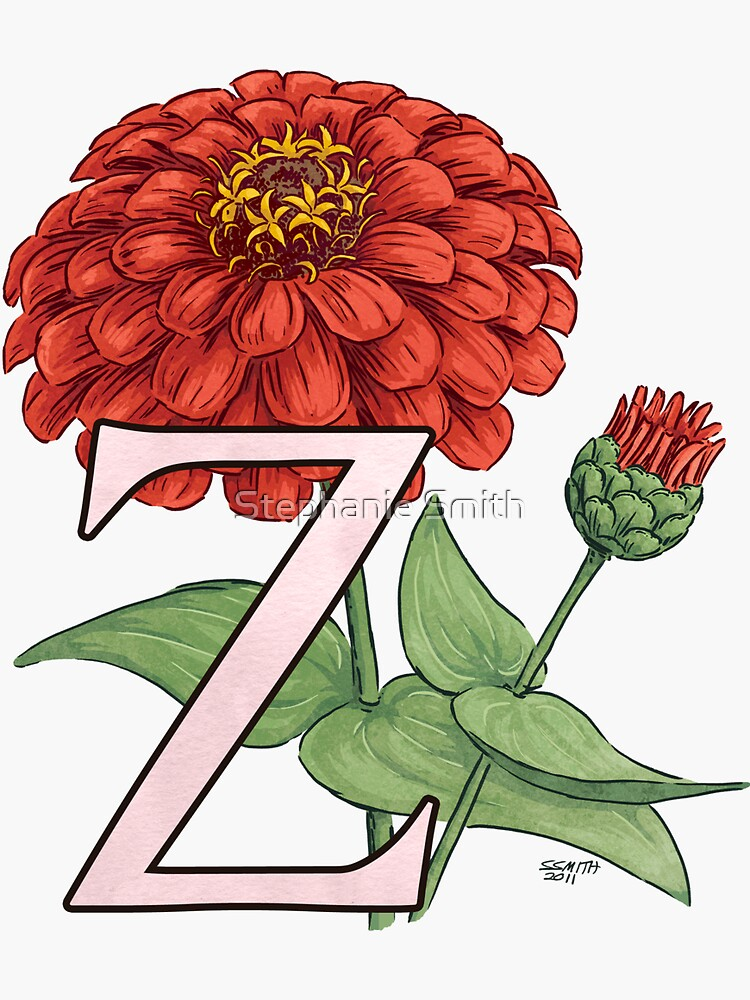 Z is for Zinnia floating by stephsmith