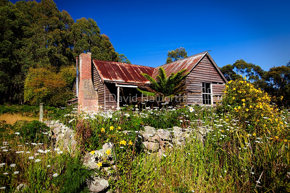 Rusting in the flowers by David Haworth
