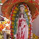 our lady of the sombrero by Bruce  Dickson