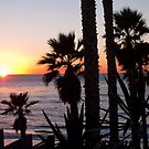 encinitas sunset 2 by Bruce  Dickson