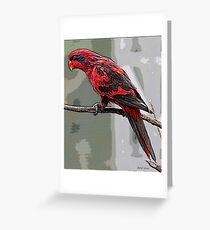 Blue Streaked Lory Bird  Poster Print & Card Greeting Card