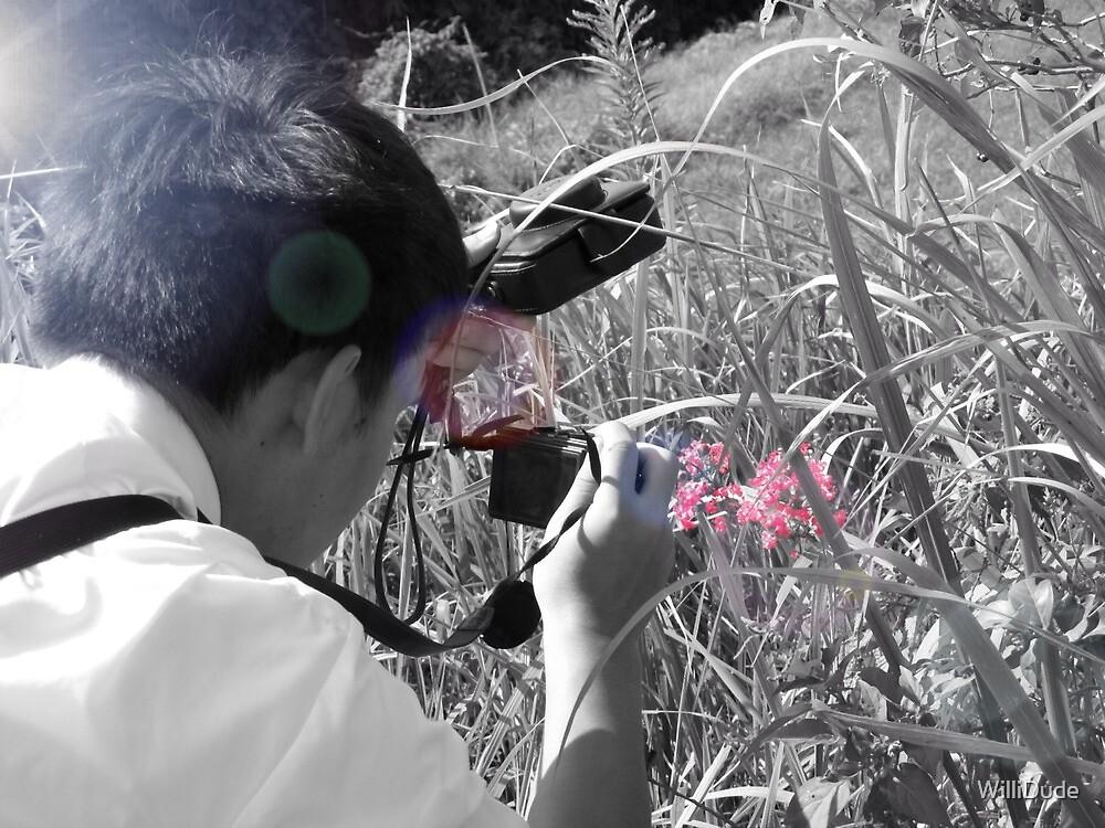 Macro Photography by WilliDude