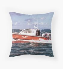 Flying Without Wings.......Waitemata II........! Throw Pillow