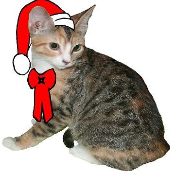 Santa Cat by abigailnicole04