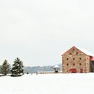 A very unique barn by Penny Fawver
