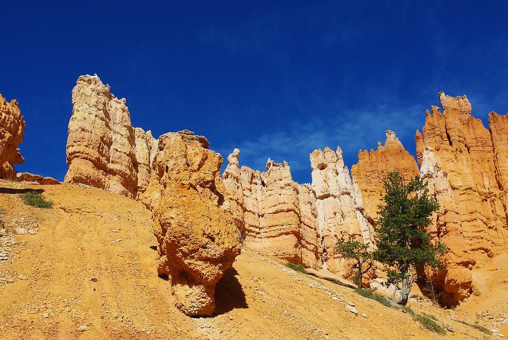 Bryce impression, Utah by Claudio Del Luongo