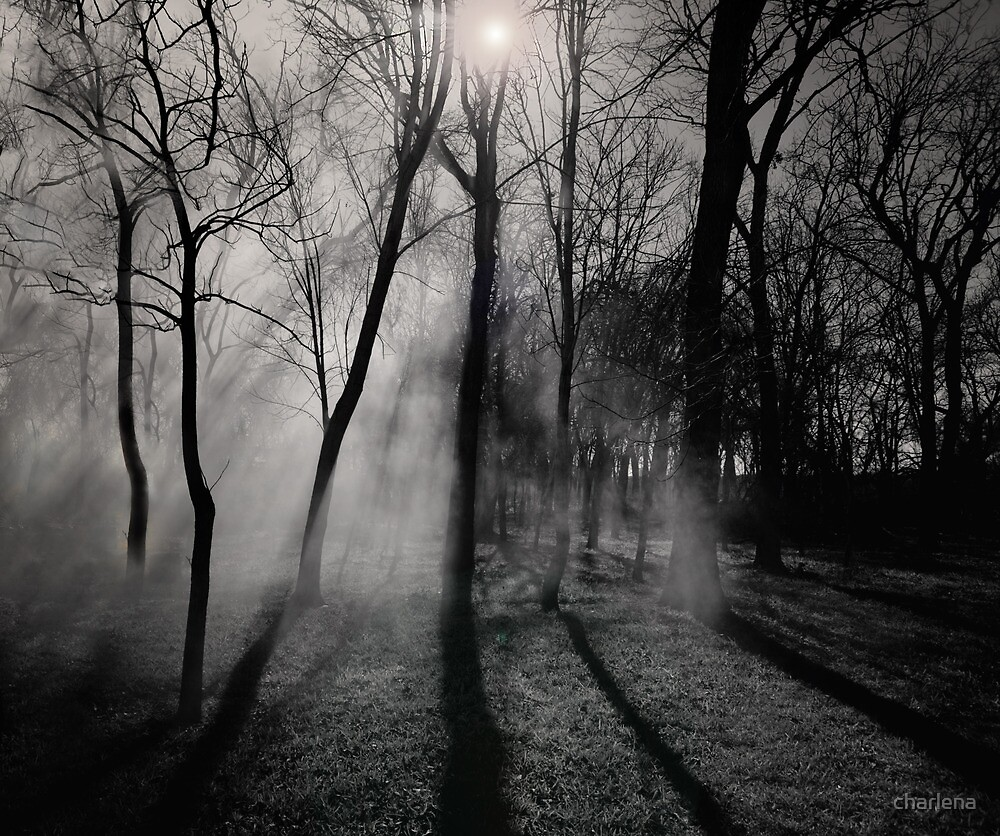 The Mist... by charlena