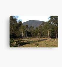 Mt Ewards Canvas Print