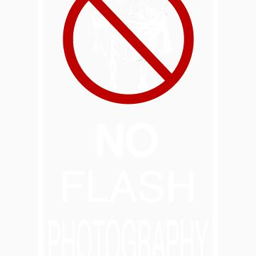 No Flash Photography! by itsacamera