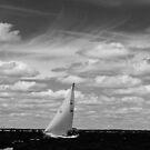 Enjoying the Breeze by Allaina Morton-Cruise