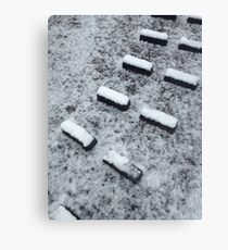 Lock footholds with snow Canvas Print