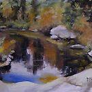Adirondack Pond by Patricia Elliott