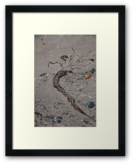 Nazca 2 by DAJPowell