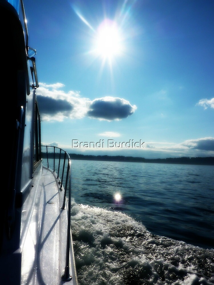 gliding through time~ by Brandi Burdick