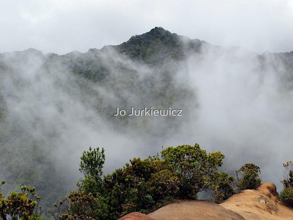 Fog on the Mountain by Jo Jurkiewicz