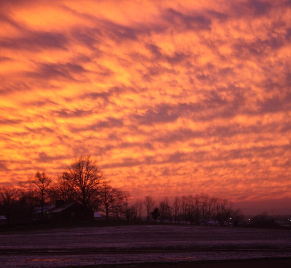 FIERY WINTER SUNSET by Pauline Evans