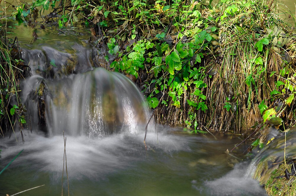 Tumbling Water, Monk's Dale by Rod Johnson