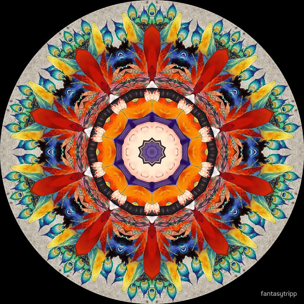 Peacock Color Kaleidoscope 04 by fantasytripp