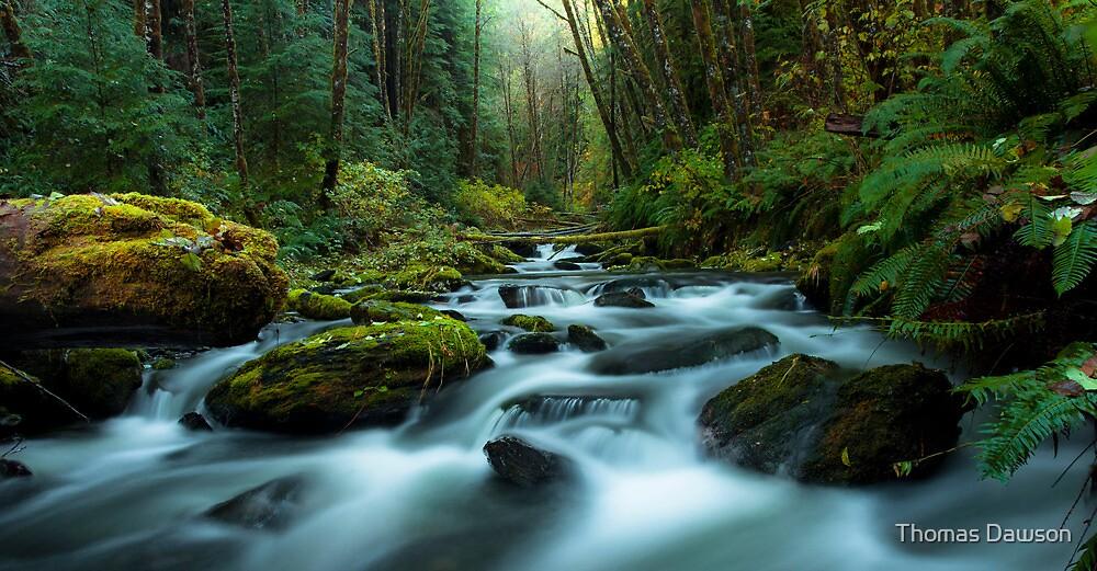 My Secret Paradise - Pure Nature by Thomas Dawson