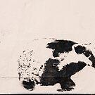 Badger by Simon Harrison