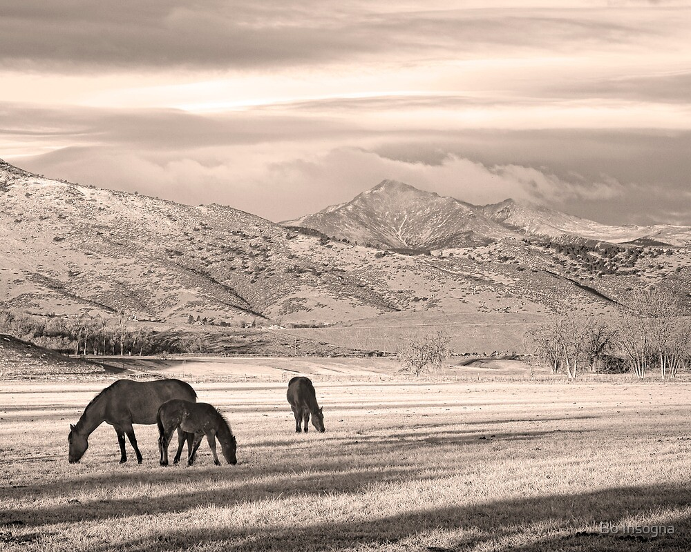 Rocky Mountain Colorado Longs Peak Country Morning Sepia by Bo Insogna