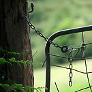 Fern at the Farm Gate by Clare Colins
