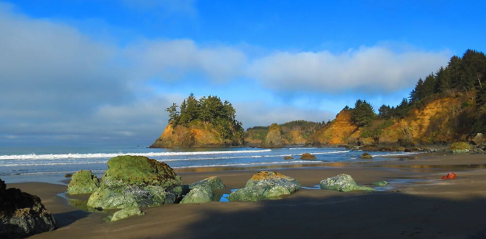 Cove, Northern California by Alex Call