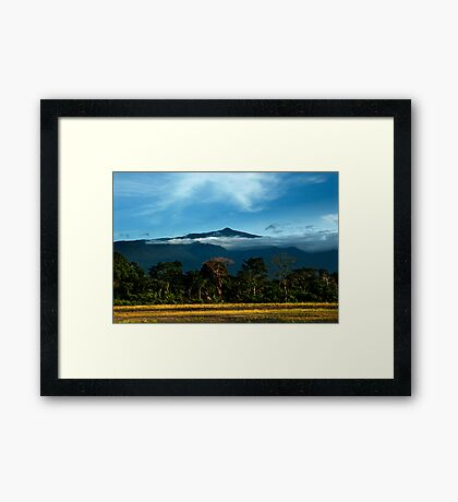 Pico on a Clear Day Framed Print