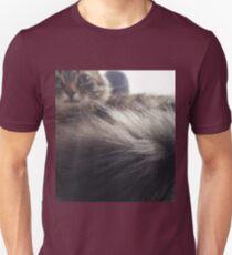 cat lovers  T-Shirt